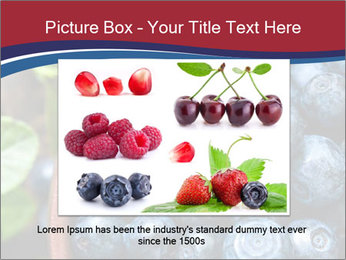 0000078431 PowerPoint Templates - Slide 15