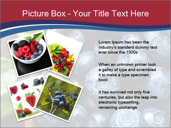 0000078431 PowerPoint Templates - Slide 23