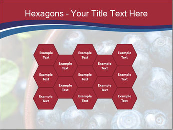 0000078431 PowerPoint Templates - Slide 44