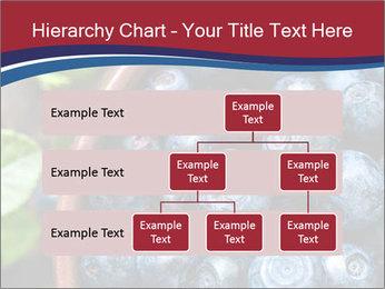 0000078431 PowerPoint Template - Slide 67