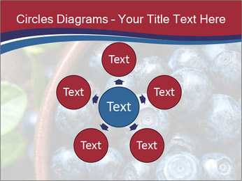 0000078431 PowerPoint Templates - Slide 78