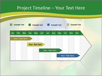 0000078432 PowerPoint Templates - Slide 25