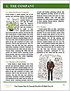 0000078441 Word Template - Page 3