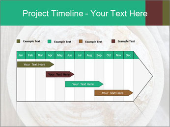 0000078447 PowerPoint Template - Slide 25