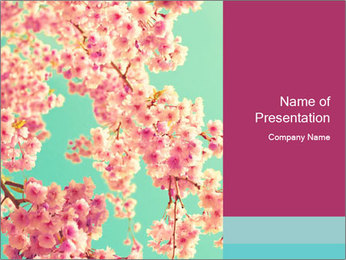 0000078450 PowerPoint Template
