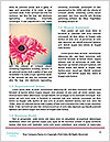 0000078450 Word Templates - Page 4