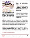 0000078455 Word Templates - Page 4