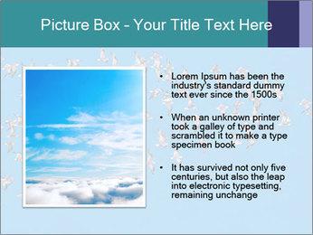 0000078457 PowerPoint Template - Slide 13