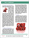 0000078459 Word Template - Page 3