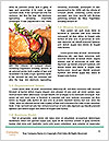 0000078477 Word Template - Page 4