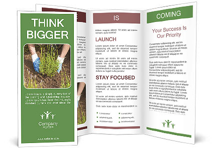 0000078479 Brochure Template