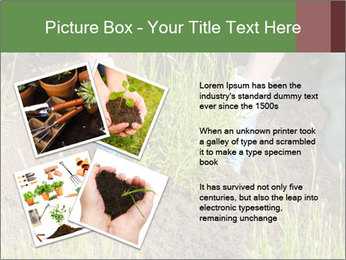 0000078479 PowerPoint Templates - Slide 23