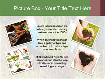 0000078479 PowerPoint Templates - Slide 24