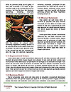 0000078479 Word Templates - Page 4