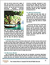 0000078480 Word Template - Page 4
