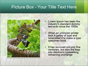 0000078482 PowerPoint Template - Slide 13
