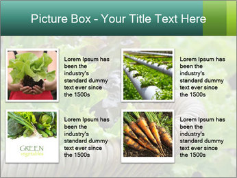 0000078482 PowerPoint Templates - Slide 14