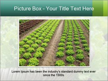 0000078482 PowerPoint Templates - Slide 15