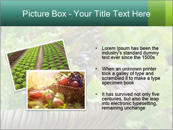 0000078482 PowerPoint Template - Slide 20