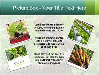 0000078482 PowerPoint Templates - Slide 24