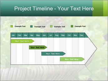 0000078482 PowerPoint Templates - Slide 25