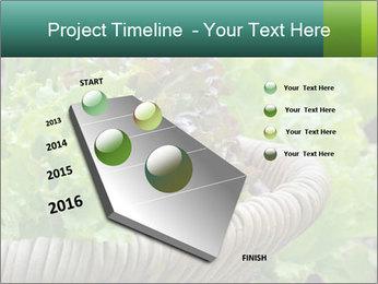 0000078482 PowerPoint Templates - Slide 26