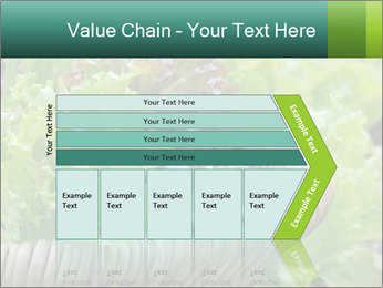 0000078482 PowerPoint Templates - Slide 27
