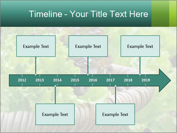 0000078482 PowerPoint Templates - Slide 28