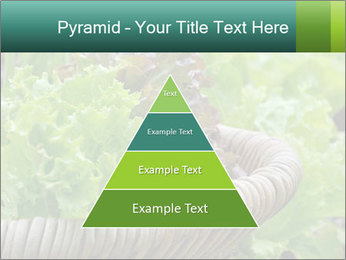 0000078482 PowerPoint Templates - Slide 30