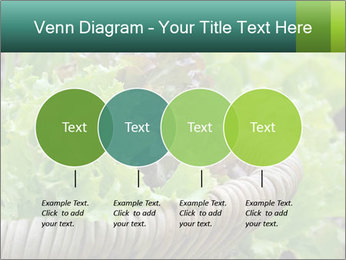 0000078482 PowerPoint Templates - Slide 32
