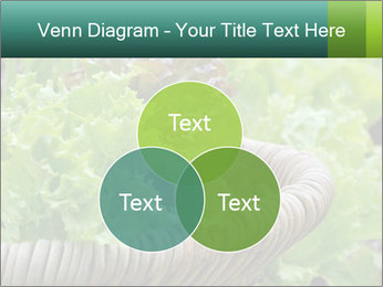 0000078482 PowerPoint Templates - Slide 33