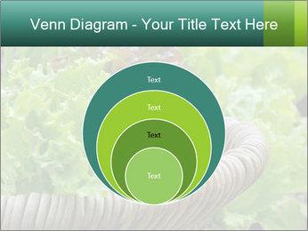 0000078482 PowerPoint Templates - Slide 34
