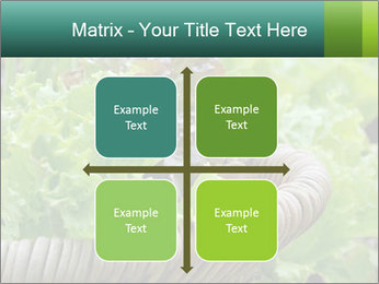 0000078482 PowerPoint Templates - Slide 37