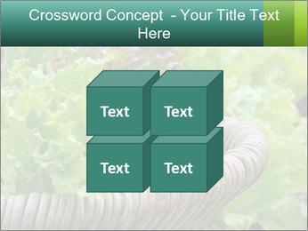 0000078482 PowerPoint Template - Slide 39