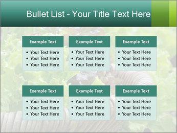 0000078482 PowerPoint Templates - Slide 56