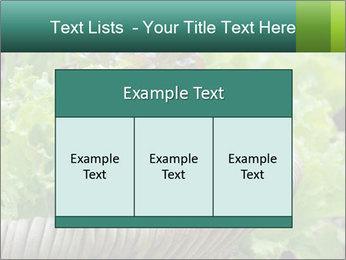 0000078482 PowerPoint Template - Slide 59