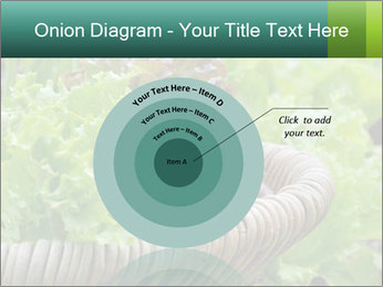 0000078482 PowerPoint Template - Slide 61