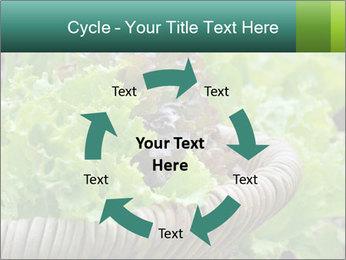 0000078482 PowerPoint Template - Slide 62