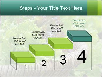 0000078482 PowerPoint Template - Slide 64