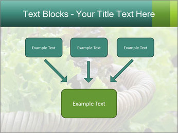 0000078482 PowerPoint Template - Slide 70