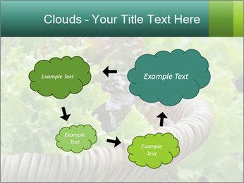 0000078482 PowerPoint Templates - Slide 72