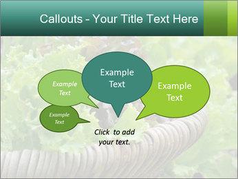 0000078482 PowerPoint Templates - Slide 73