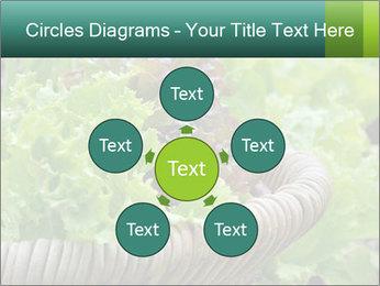 0000078482 PowerPoint Template - Slide 78