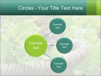 0000078482 PowerPoint Templates - Slide 79