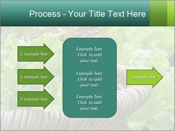 0000078482 PowerPoint Templates - Slide 85