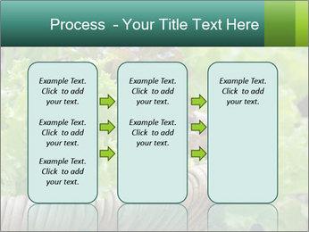 0000078482 PowerPoint Templates - Slide 86