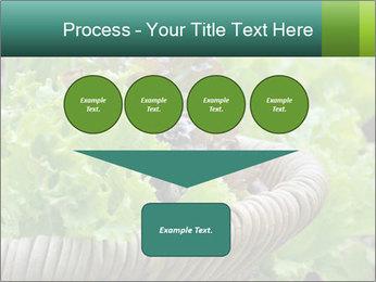 0000078482 PowerPoint Template - Slide 93