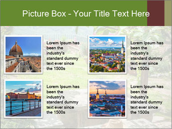 0000078488 PowerPoint Template - Slide 14