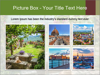 0000078488 PowerPoint Template - Slide 19