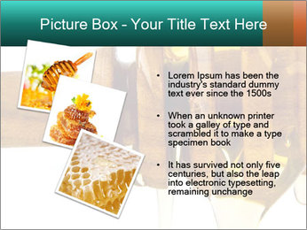 0000078497 PowerPoint Template - Slide 17